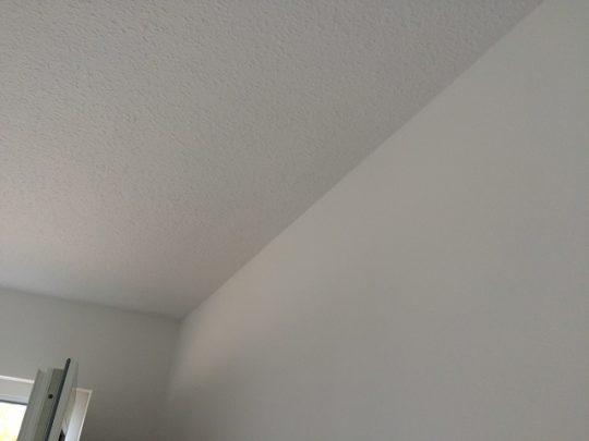 Maler - Flur im Erdgeschoss